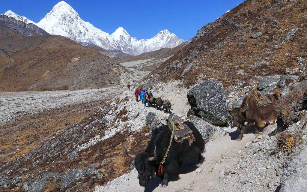Everest Two Passes Trek