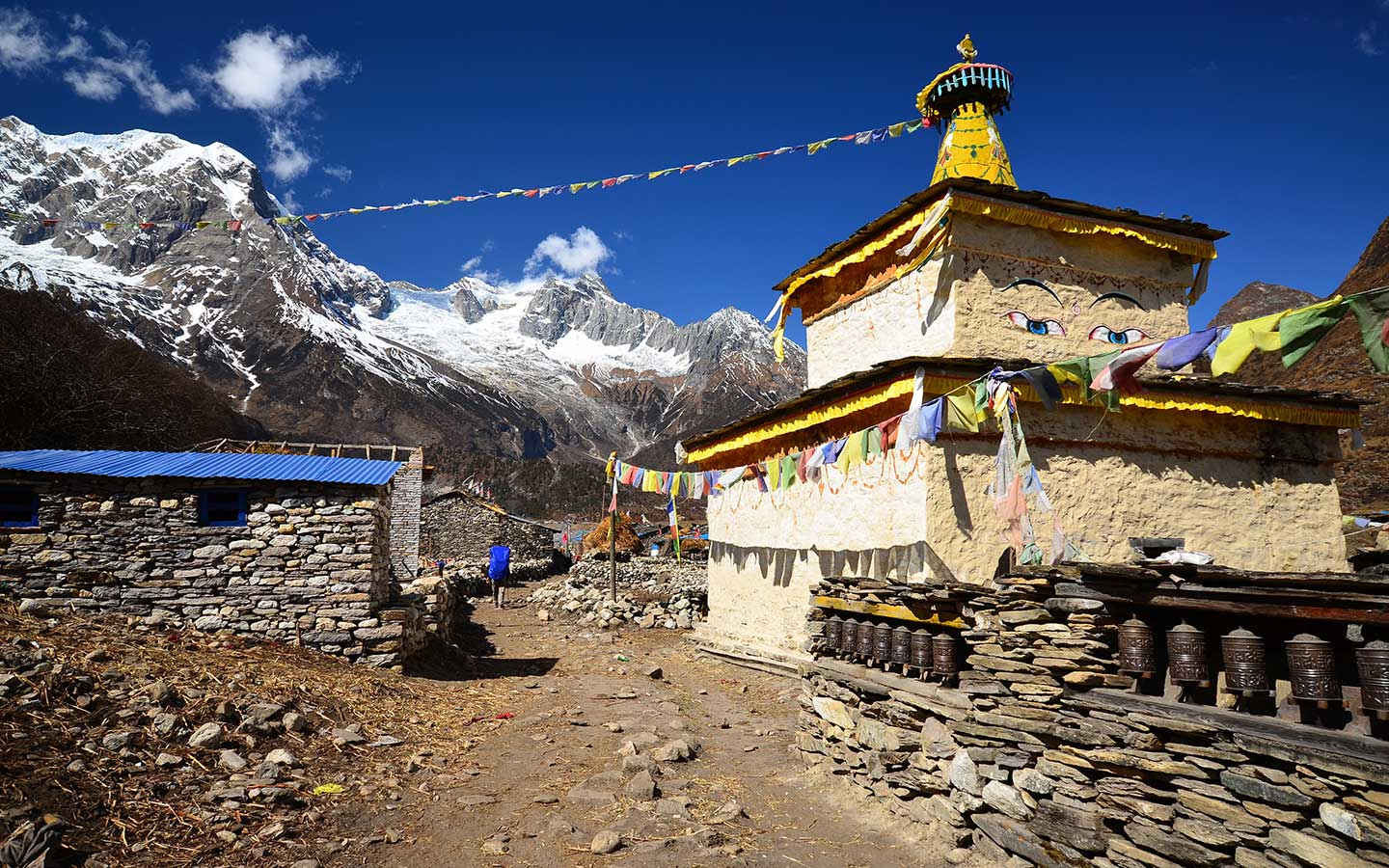 Hire a guideporter for Manaslu Trek (4)