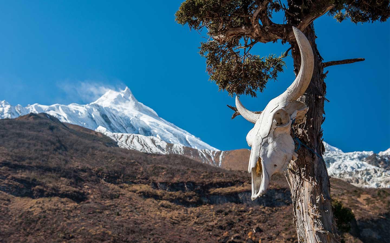 Manaslu - Tsum Valley Trek